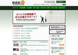 サイトイメージ:株式会社 ヒューマンネット・コンサルティング