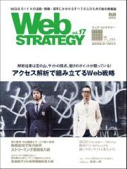 webstrategy17.jpg